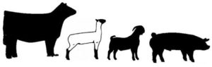 Image of livestock graphics