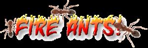 fire ants banner