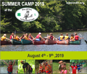 Summer Camp header image