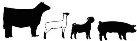Clipart of livestock