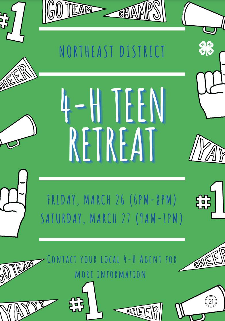 Teen Retreat flyer image